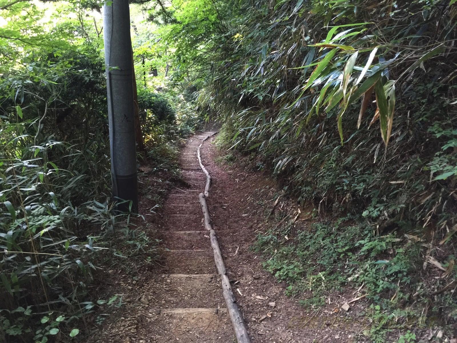 ポケモンGO高野山ツーリング2、和歌山のポケGO情報だぜ!