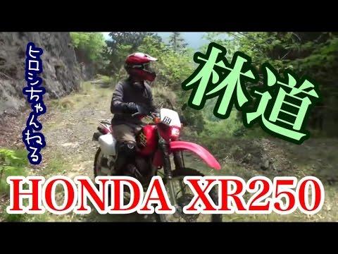 ヒロシ、スカブを0円で売ってXR250(MD30)を購入