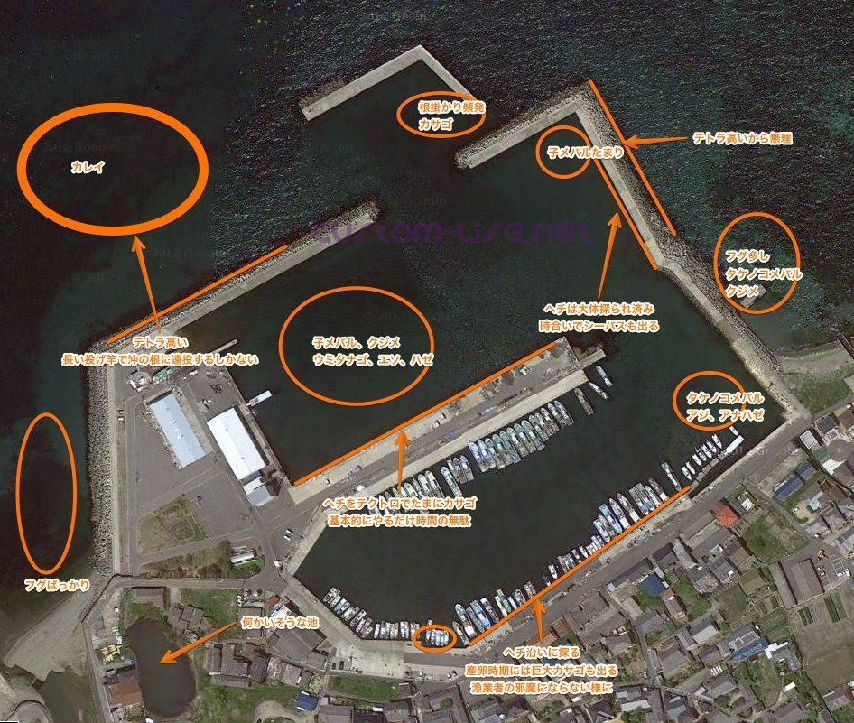 淡輪漁港の実績ポイント