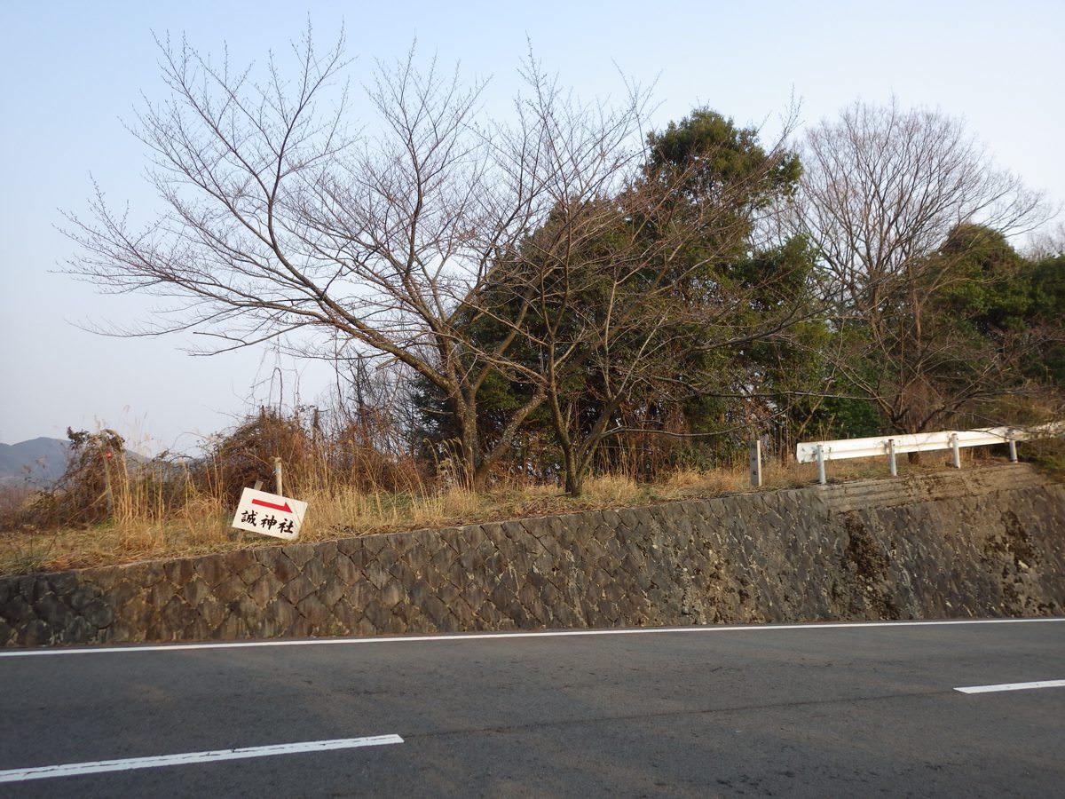 Makotojinja04