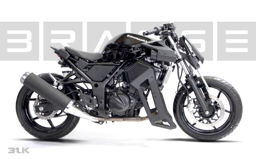 Ninja250 BRASS31BLKModkit 02