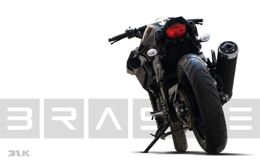 Ninja250 BRASS31BLKModkit 05