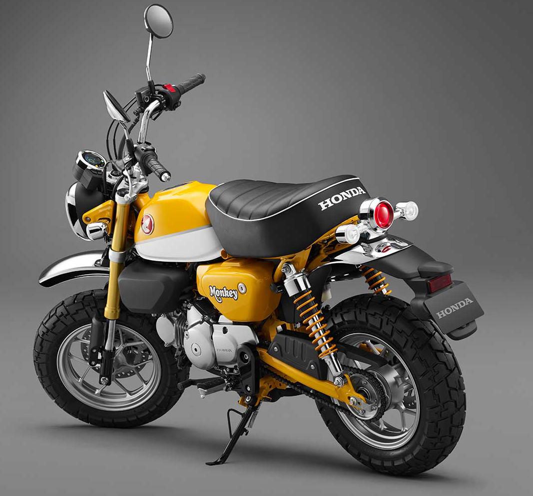 Monkey125 concept 04