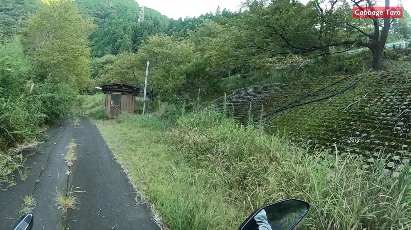 Tsubakiyama koiecampjo 07