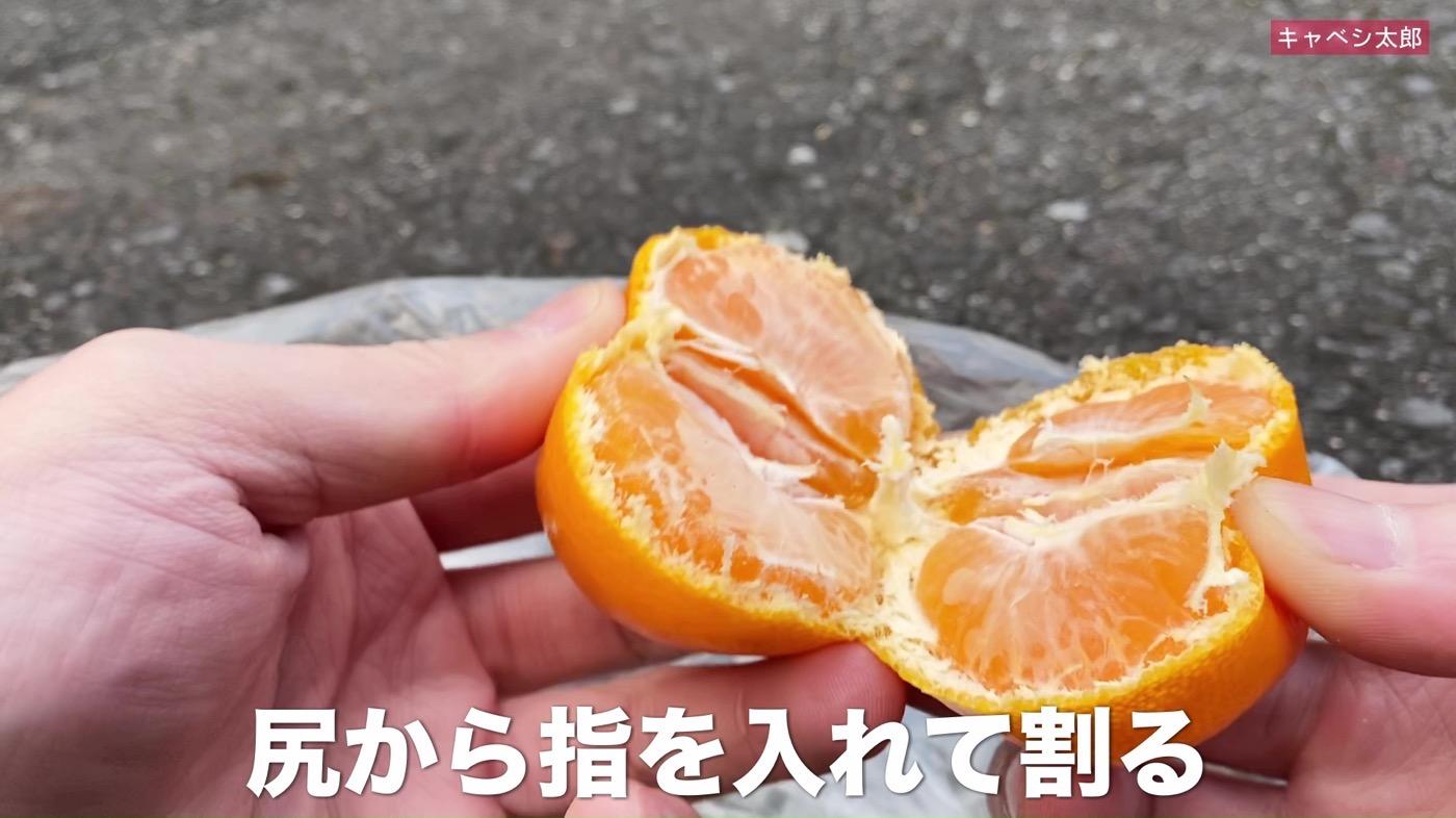 Wakayamamuki mikan 02
