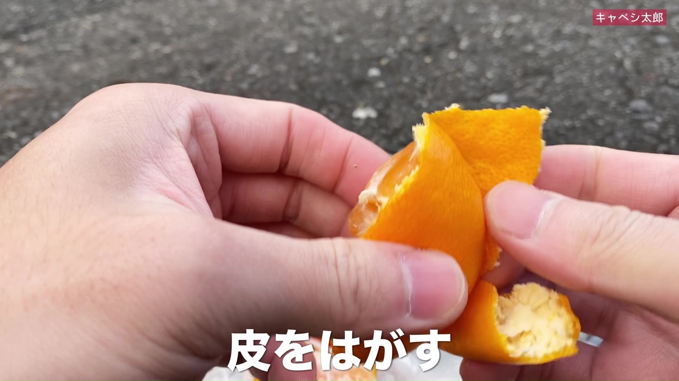 Wakayamamuki mikan 03