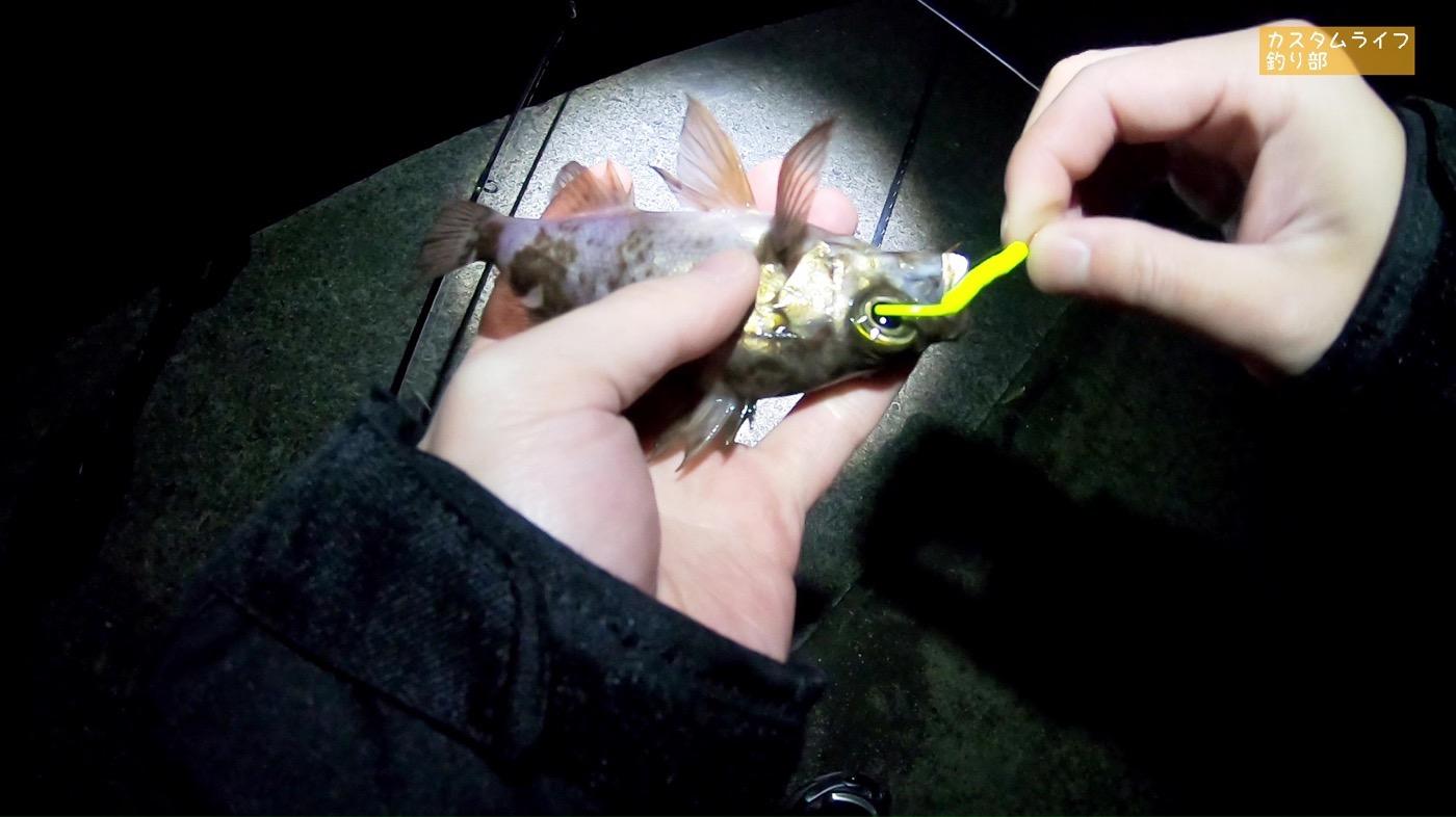 Nanki rockfishing 07