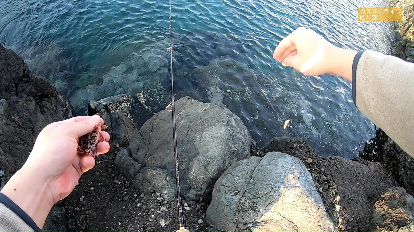 Nanki rockfishing 13