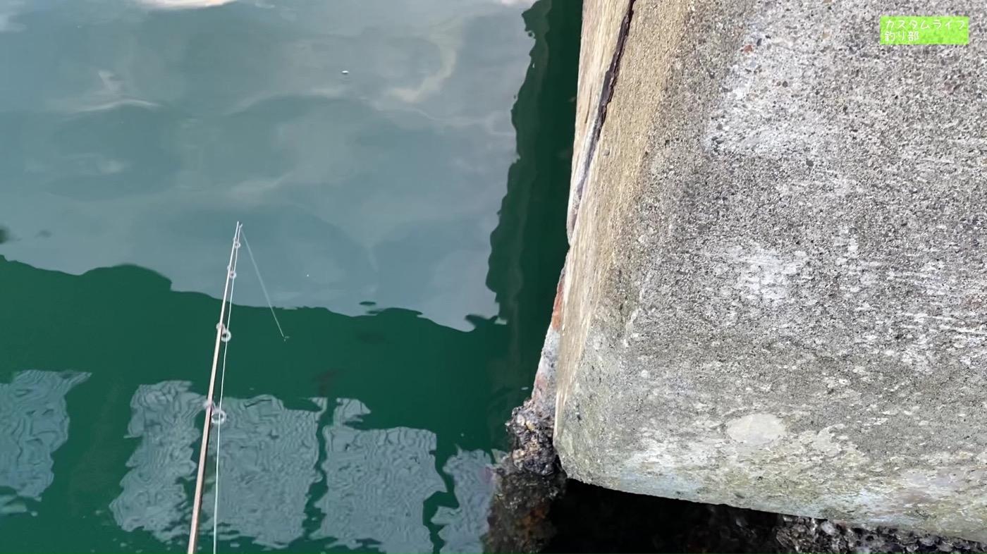 Nanki rockfishing 17